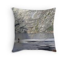 Iso-lated Throw Pillow