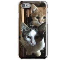 Cats on a cabinet iPhone Case/Skin