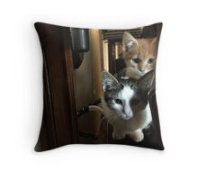 Cats on a cabinet Throw Pillow