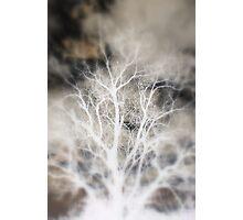 Inverted Photographic Print