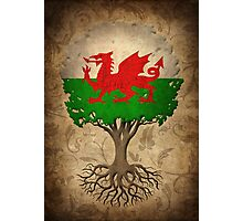 Tree of Life with Welsh Flag Photographic Print