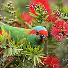 Christmas Card 02 by Kerryn Ryan, Mosaic Avenues