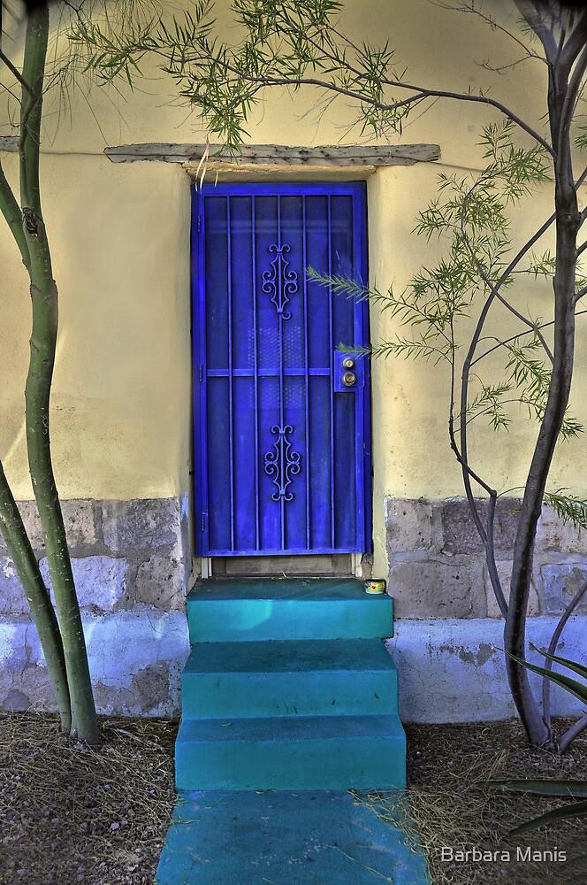 The Blue Door by Barbara Manis