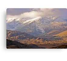 chilled  Kerry Canvas Print