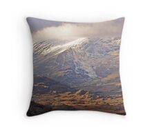 chilled  Kerry Throw Pillow