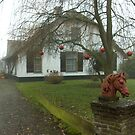 Christmas in the country by steppeland