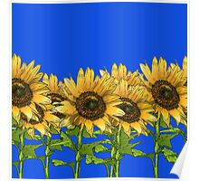 Sunflowers Blue Poster