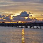 Coming home - Bribie Island by Kim Austin