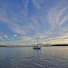Bribie Brilliance by Kim Austin