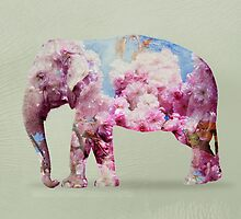 cherry blossom elephant by Vin  Zzep