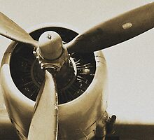 Plane from a Vintage Dream by Jen Waltmon