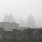 Godstow Abbey Ruins in the Mist by Skye Hohmann