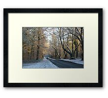 The mail has to get thru... Framed Print