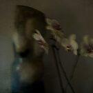 SOLONGE & ORCHIDS  by scarletjames