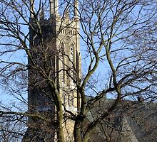 Church Through The Trees by Tracy Faught