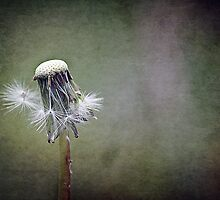 ~ Gone with the Wind ~ by Lynda Heins
