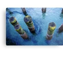 lichen pilings Metal Print