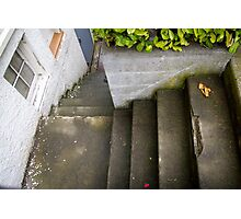 down the outside staircase Photographic Print