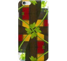 Imbolc 1 iPhone Case/Skin