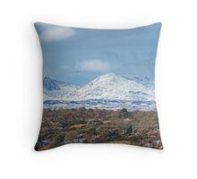Massicks Wood and the Coniston Fells Throw Pillow