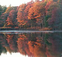 Fall In New Hampshire by vernonkilby