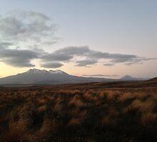 Ruapehu at sunset by zijing
