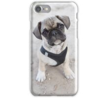 Cute puppy looking up iPhone Case/Skin