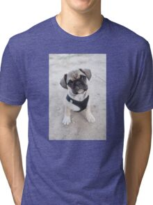 Cute puppy looking up Tri-blend T-Shirt