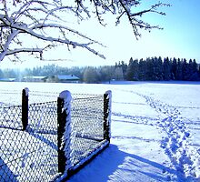 Winter in Bavaria by ©The Creative  Minds