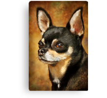 Chihuahua Portrait Canvas Print