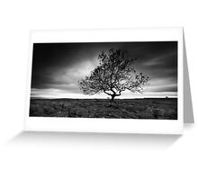 Cold Light of Day Greeting Card