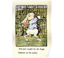 The Tale of Peter Rabbitt Beatrix Potter 1916 0030 Gooseberry Net and Large Jacket Buttons Poster