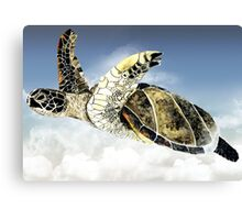 Flying Mr Turtle Canvas Print