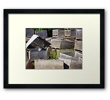Crates & Flowers Framed Print