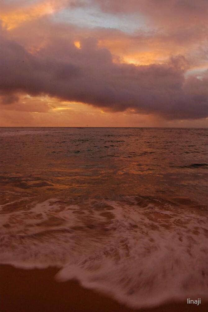 Morning Takes Hold... Kauai Sensual Series by linaji