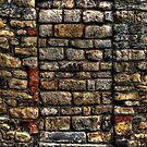 Hidden Door! by KChisnall