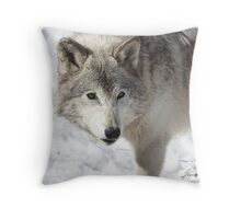 Incredulity Throw Pillow