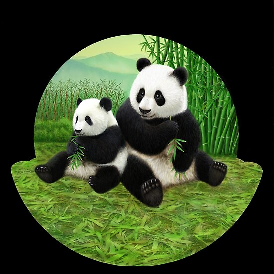 Pandas by Karen  Hull