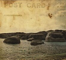 Elephant Rocks Postcard by garts