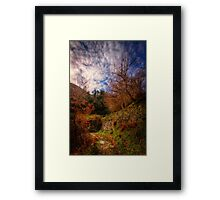 About the living man Framed Print