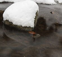 Reflected stone by WET-photo