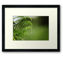 Little Big World I Framed Print