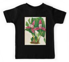 Iconagraphy of Orchids Iconographie des Orchidées Jean Jules Linden V17 1906 0016 Kids Tee
