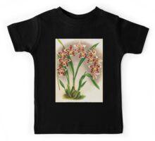Iconagraphy of Orchids Iconographie des Orchidées Jean Jules Linden V17 1906 0114 Kids Tee