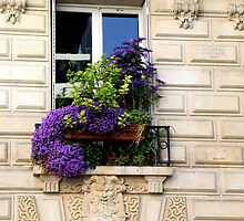 Flowers in the Montparnasse by Peggy Berger