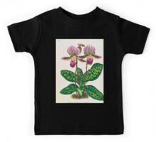 Iconagraphy of Orchids Iconographie des Orchidées Jean Jules Linden V17 1906 0130 Kids Tee