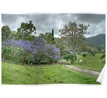 Bellinger Valley Farm, New South Wales, Australia Poster