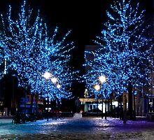 Trondheim by night by batshit