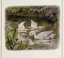 Jemima Puddle Duck Beatrix Potter 1917 0007 Search for Food Splish Splash Sploosh in the Pond by wetdryvac
