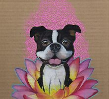Zen Boston Terrier - Lotus Flower by PaperTigressArt
